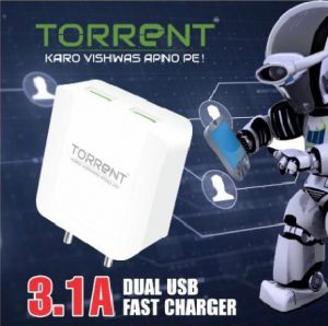 dual-usb-fast-charger